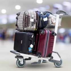 Excess Baggage Delivery Services in R K Puram