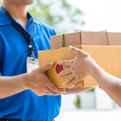 Express Import Services in Malviya Nagar