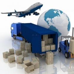 International Courier Services in Igi Airport